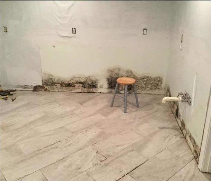 Northwest Spokane Mold and Water Damage